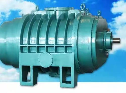 ZJ10000罗茨真空泵